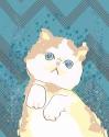 Karenza the Kitty (thumbnail)