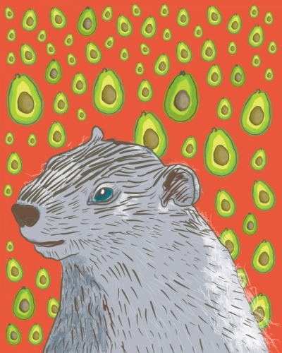 Drawing--AnimalsQuentin the Groundhog - Avocado Dreaming