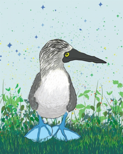 Byron the Blue Footed Booby