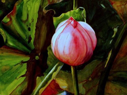 Emerging Lotus