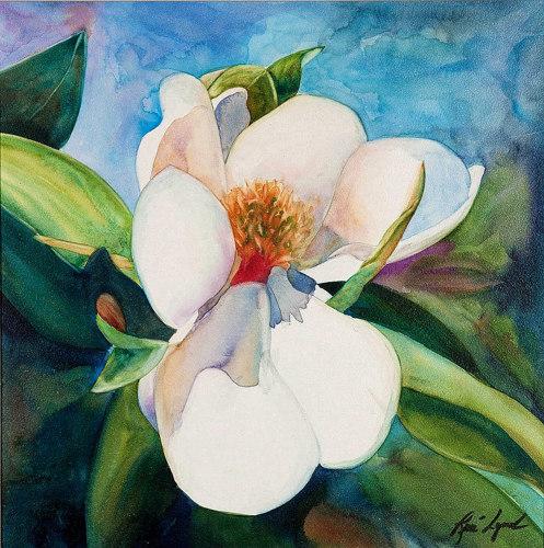 Magnolia Sutdy