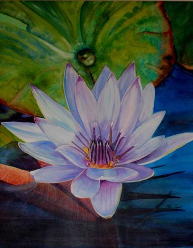 Zen Lily