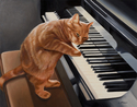 Kitten on the Keys (thumbnail)