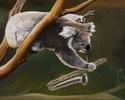 Saxy Koala (thumbnail)