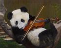 Pandalin (thumbnail)