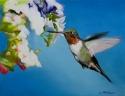 Spring Hum (thumbnail)