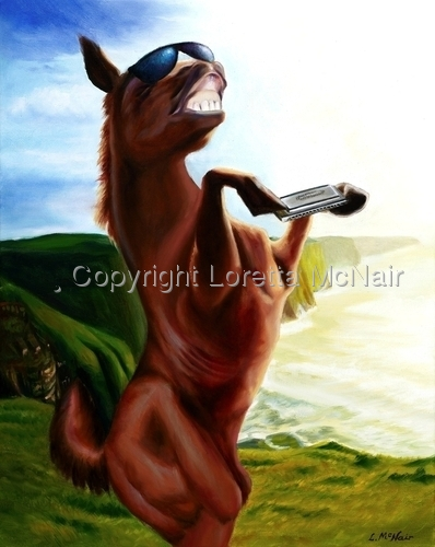 Equine Wonder
