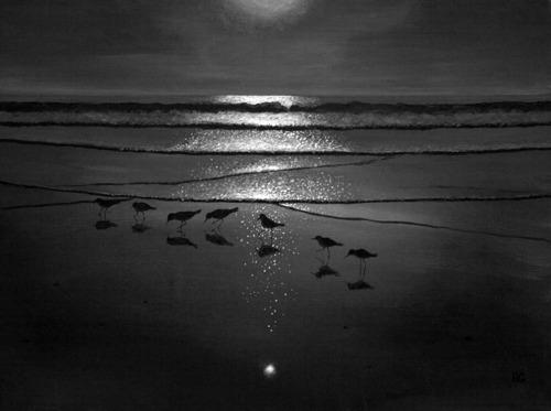 Moonlight Gathering