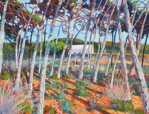 Bosque Ca Mari by Robert P. Hawkins