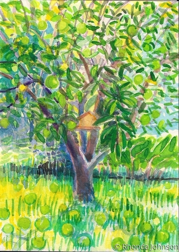 Apple Tree with Green Apples (large view)