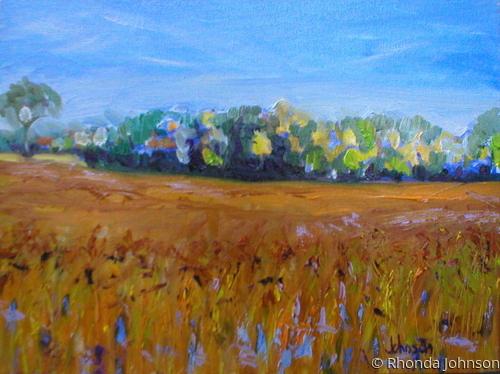 Soybean Field in Yale
