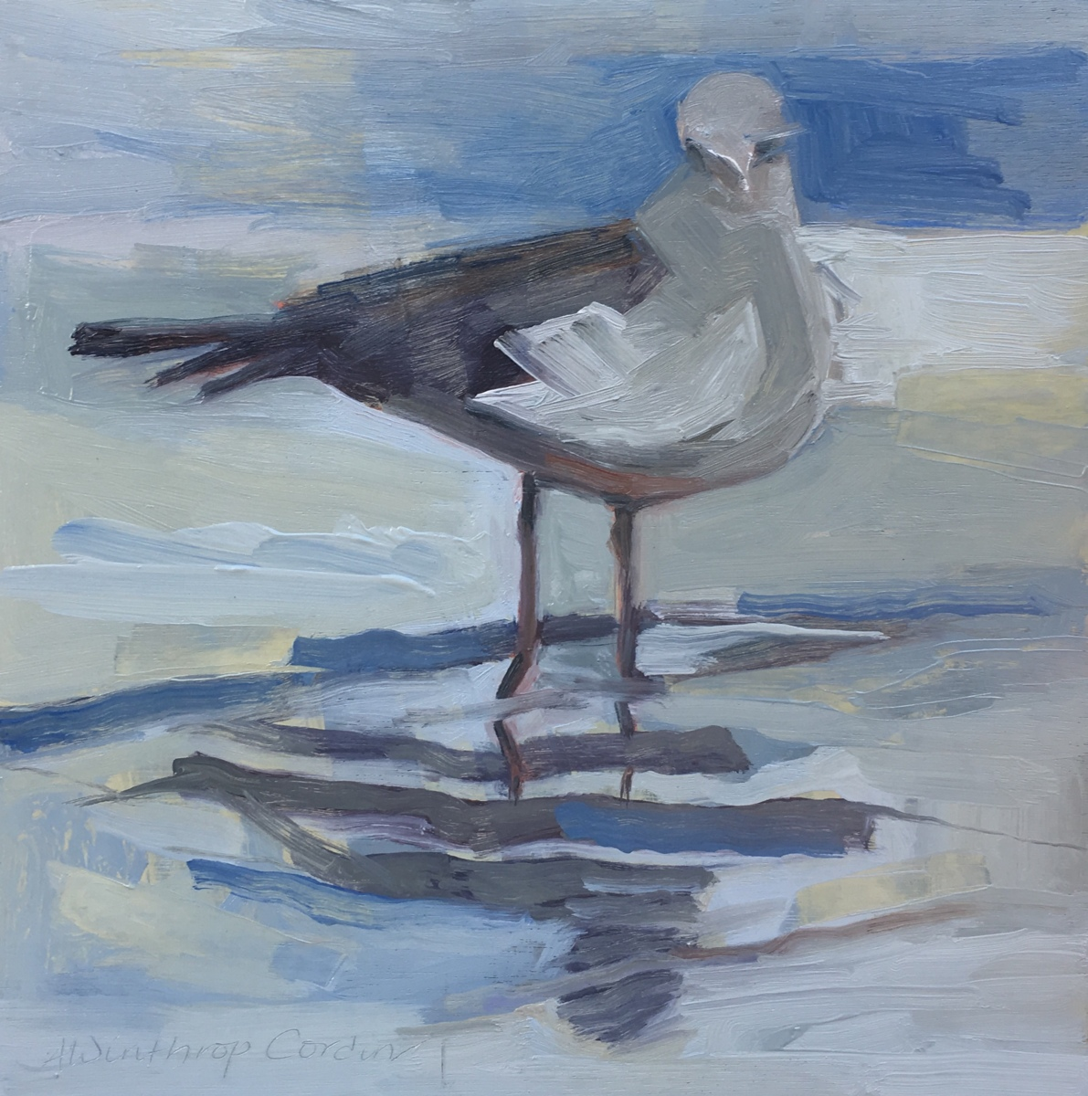 September Gull (large view)