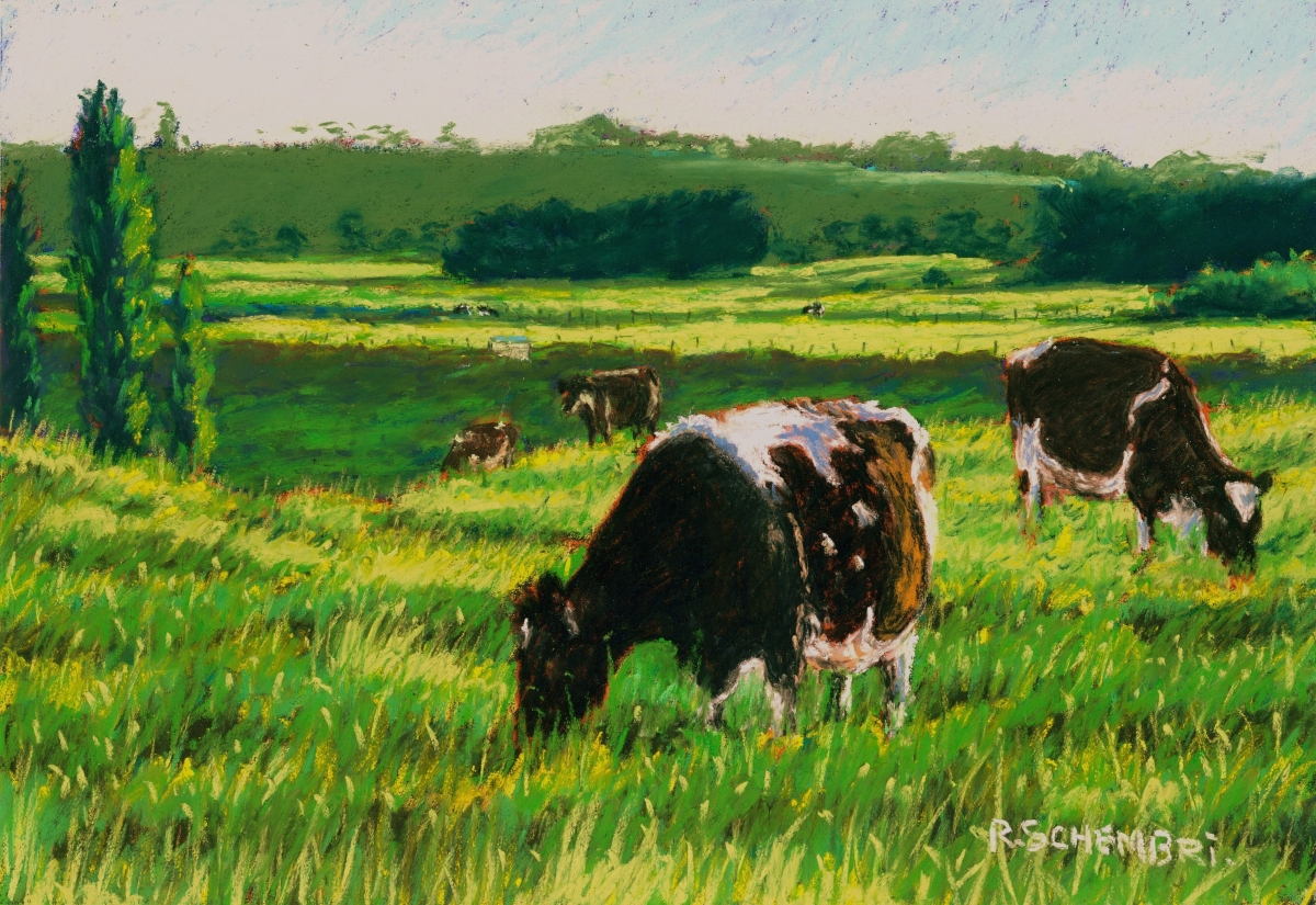 """""""Dairy cows - Cobden"""" (large view)"""