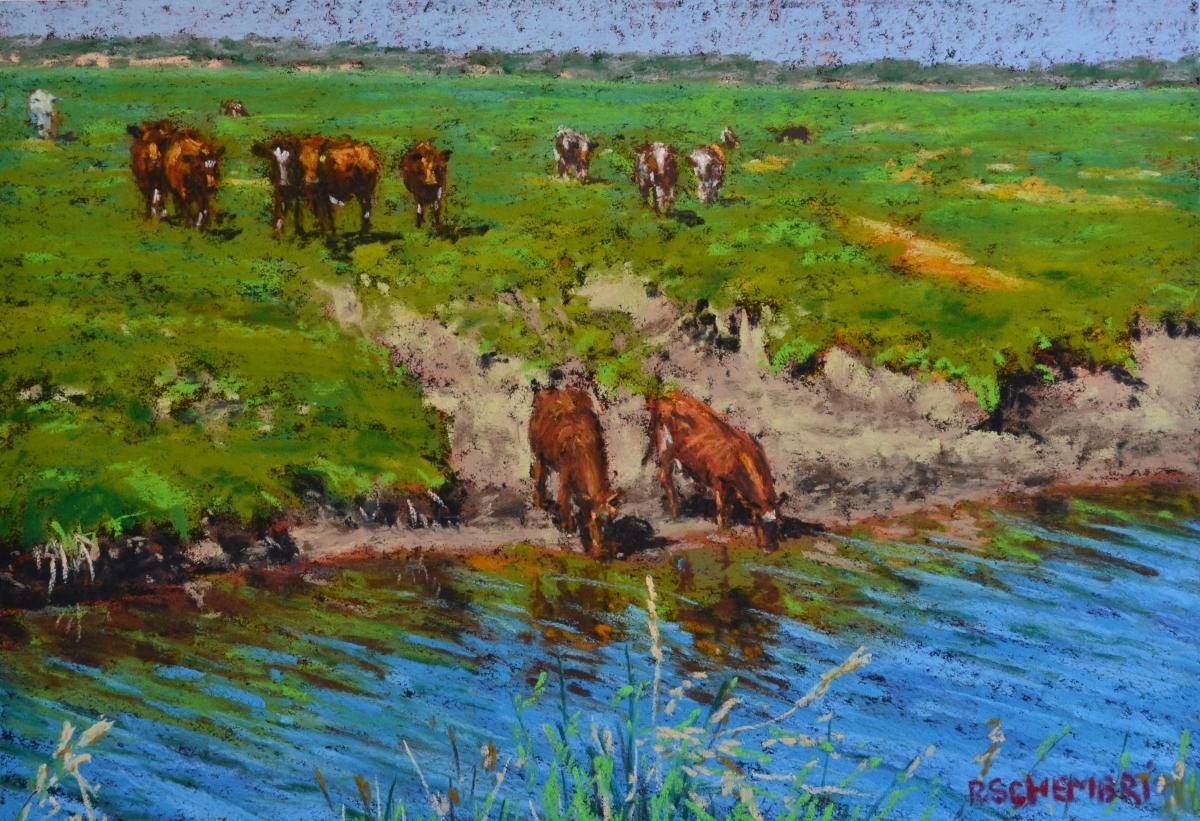"""Cows - Apollo Bay"" (large view)"