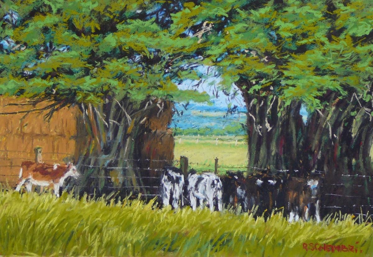 """Poddy calves - Killarney"" (large view)"