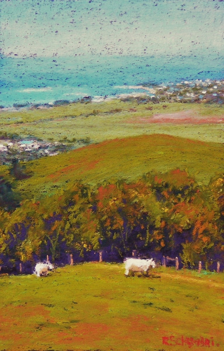 """""""Looking down at Apollo Bay"""" (large view)"""