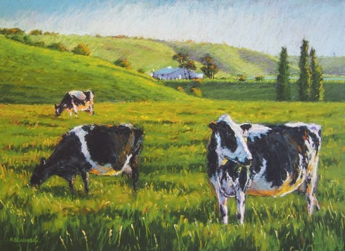 """Cows in Calf"""