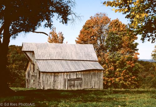 Old Barn in fall