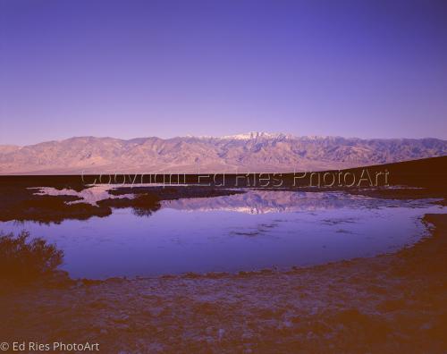 Black Water Pool Death Valley