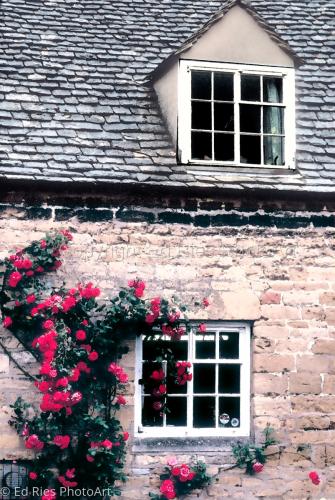 English house impresssion