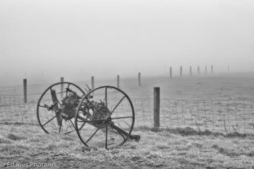 Foggy Clift