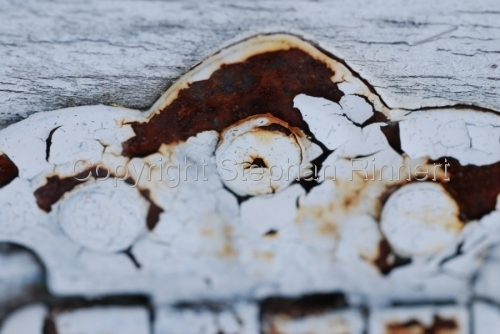 Rusted Paint