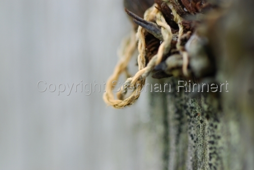 String Held up by a Rusted Screw