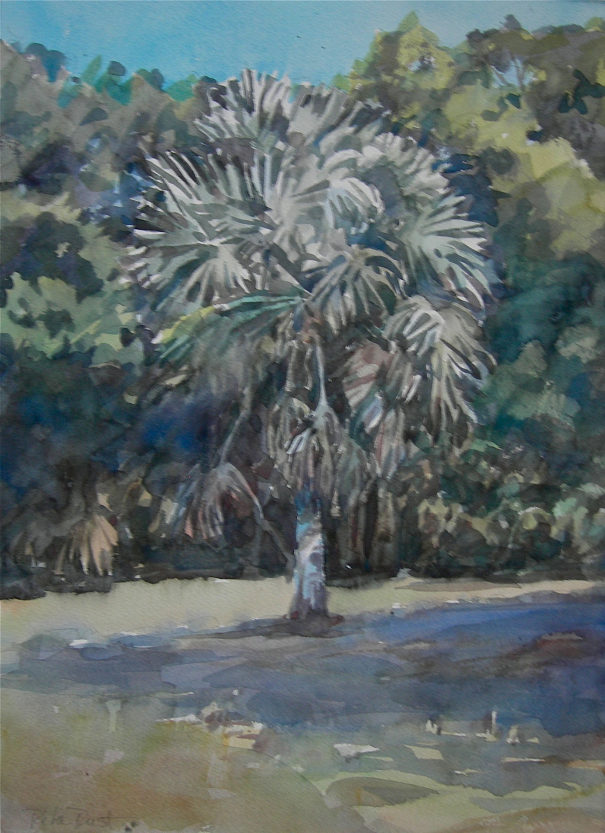 palm at Mable's (large view)