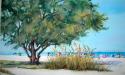 Siesta Key beach scape (thumbnail)