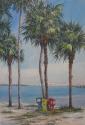 tall palms and newspaper kiosks overlooking Sarasota bay (thumbnail)