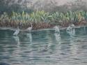 Spring on the Rio San Juan (thumbnail)