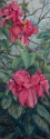 Paadise blooms (thumbnail)