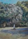 palm at Mable's (thumbnail)