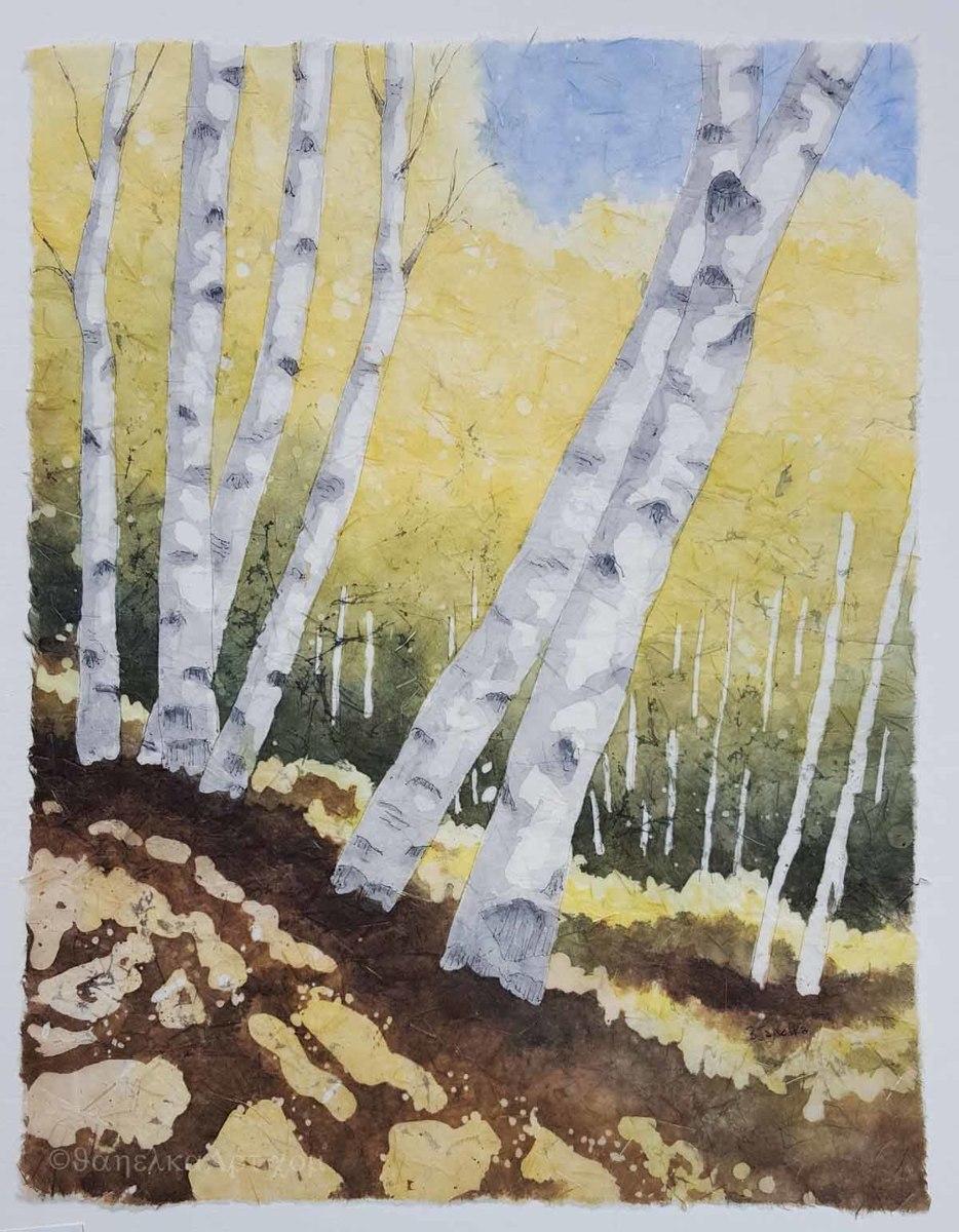 Aspen Shadows (large view)