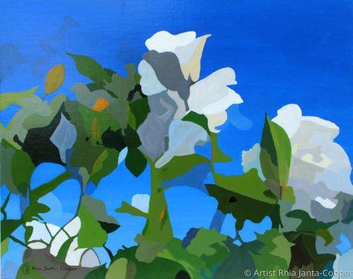 White Roses of York IV