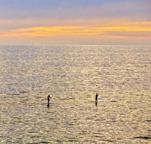 Laguna Surf Paddlers