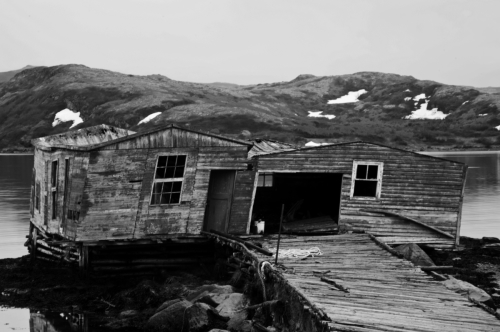 Ramshackle Boathouse Newfoundland