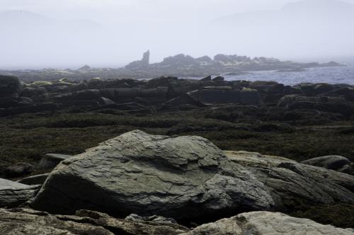 Foggy Newfoundland Coast