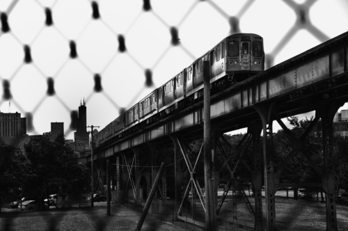 The L From Bloomingdale Trail