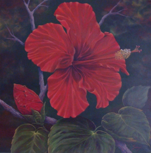 Pretty Red Hibiscus (large view)
