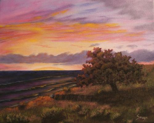 Pacific Oak (large view)