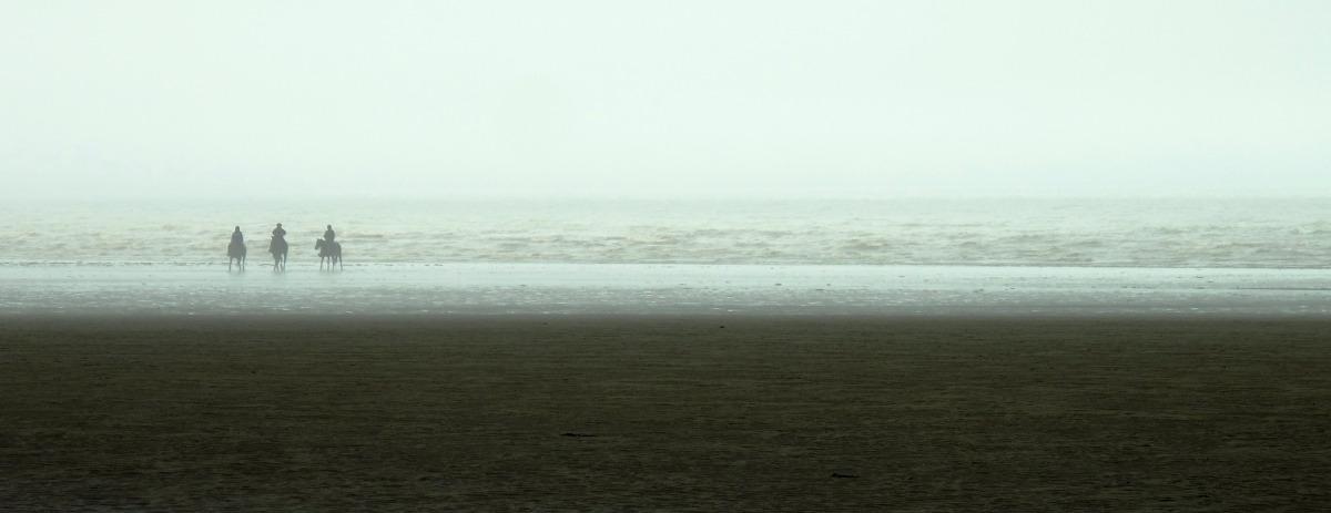 seascape (large view)