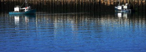 DEEP BLUE (large view)