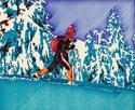 Cross country skiier (thumbnail)