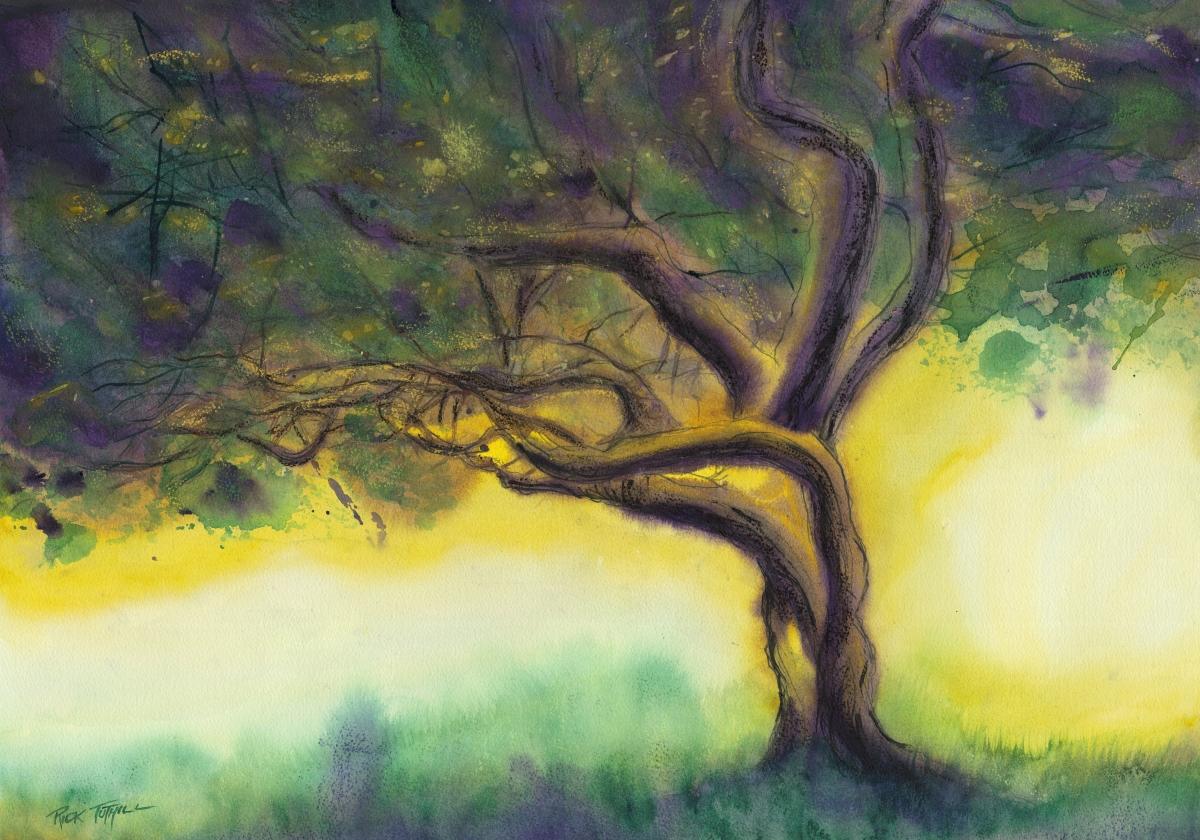 Morning Tree (large view)