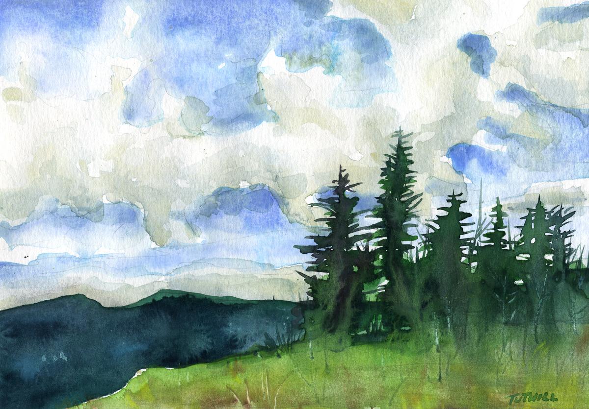 Pine Ridge (large view)
