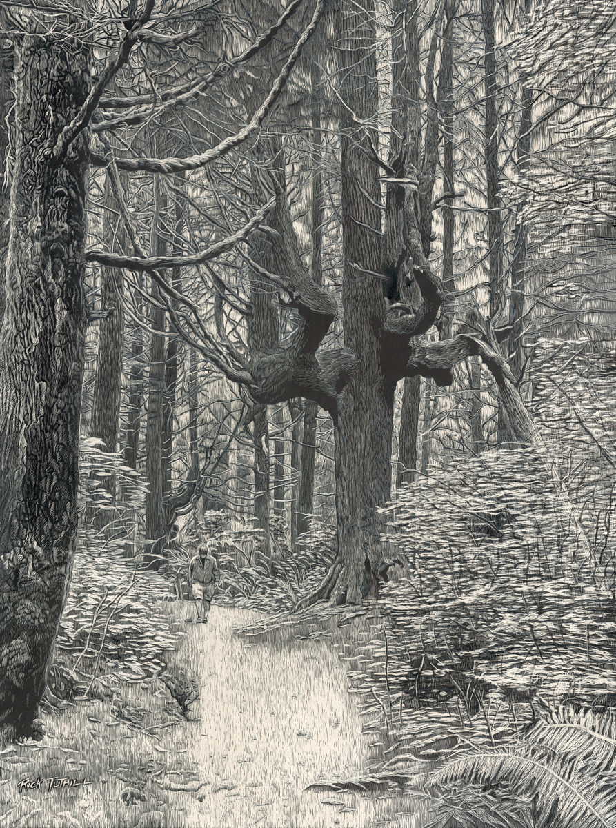 A Walk in the Forest (large view)
