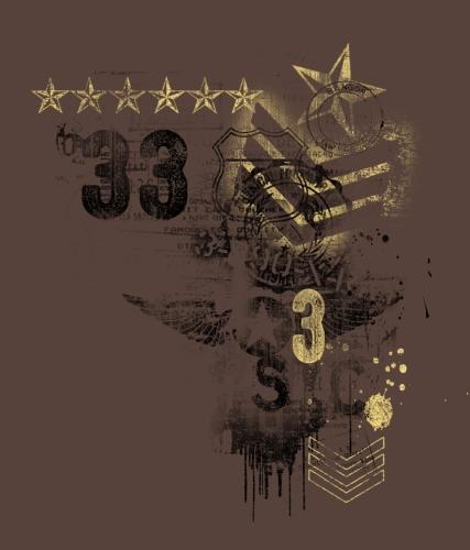 Chevron Star 33