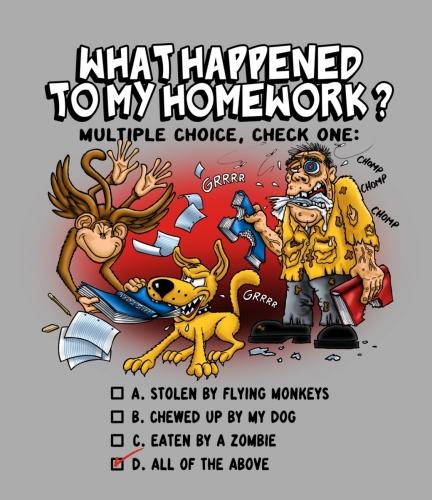 Homework Multiple Choice