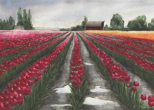 Mount Vernon Tulip Field